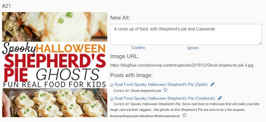 Screenshot of image alt tool